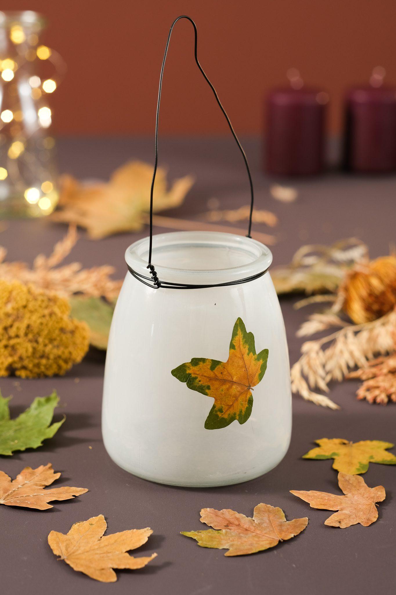 tørrede blade og indehygge med efterårsfarver